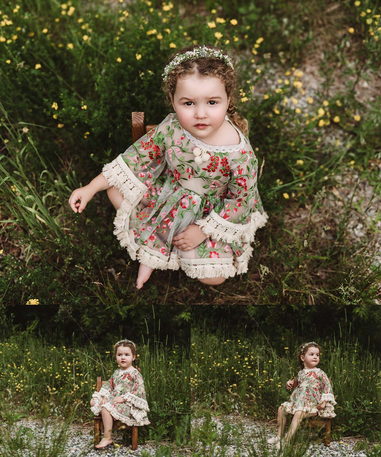 Southern new Hampshire Family Portraits toddler milestone in yellow wildflowers